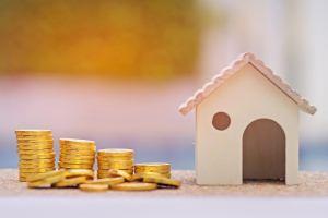 Субстандартное кредитование как фактор, спровоцировавший кризис